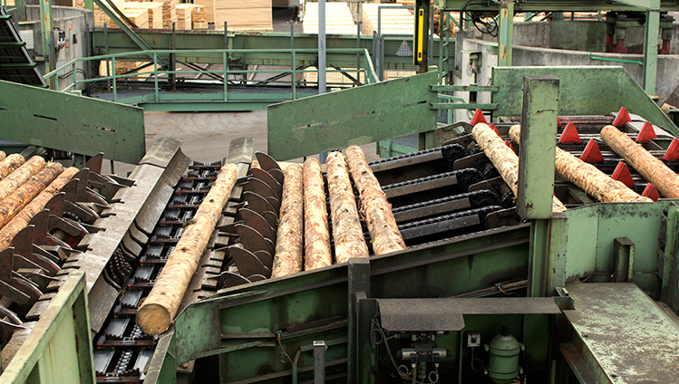 Rollers for the Wood Industry